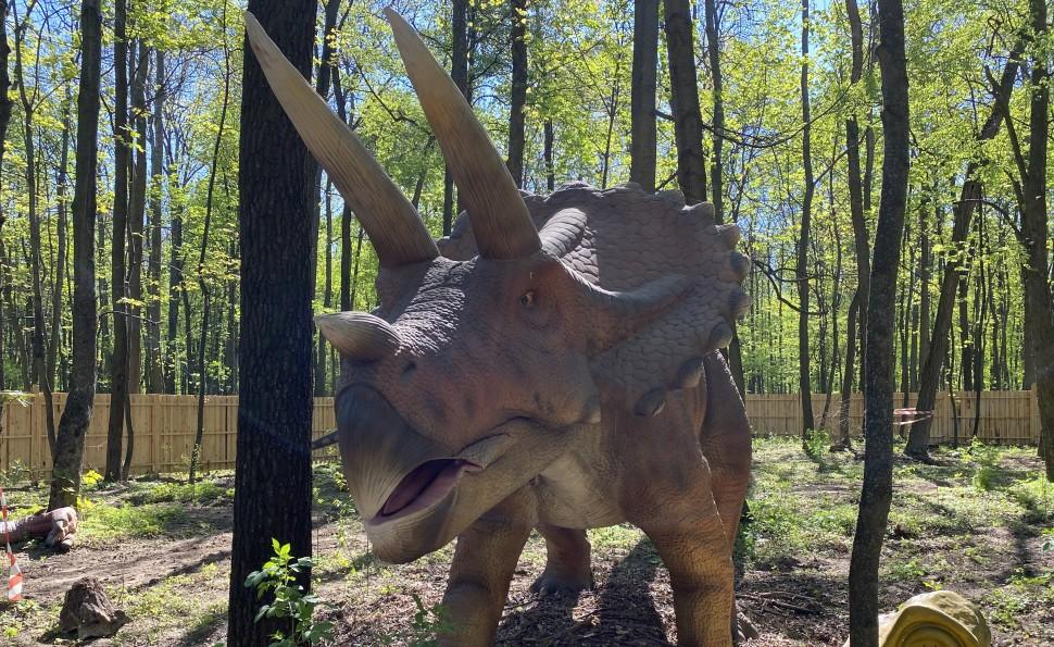 Виставка-парк «Планета динозаврів»