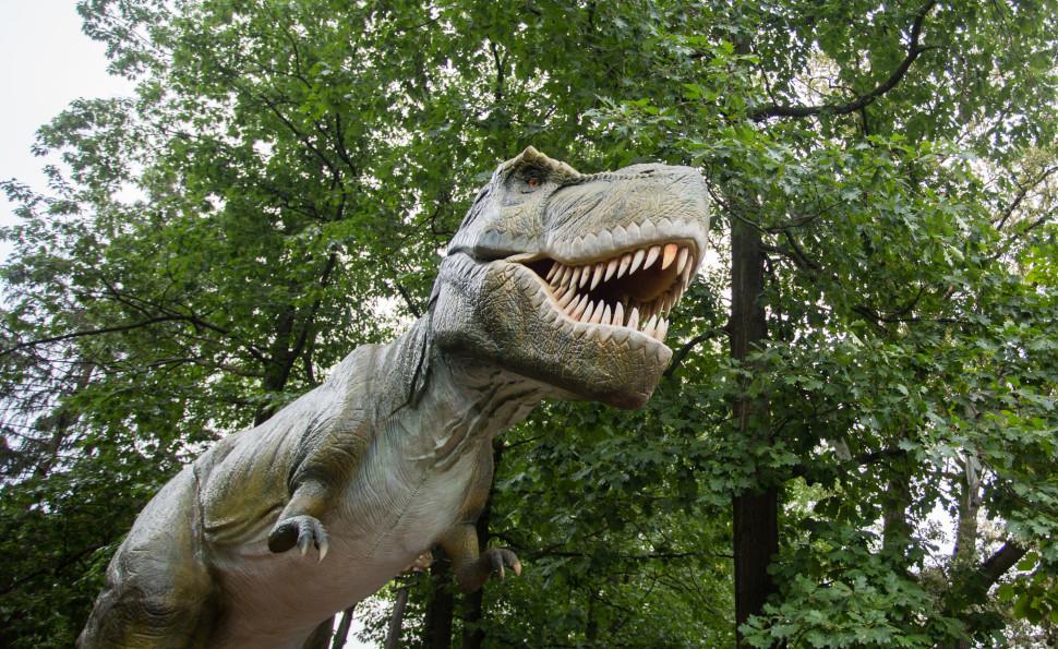 15 травня відкриття розважально-освітньої виставки — парк «Планета динозаврів»!
