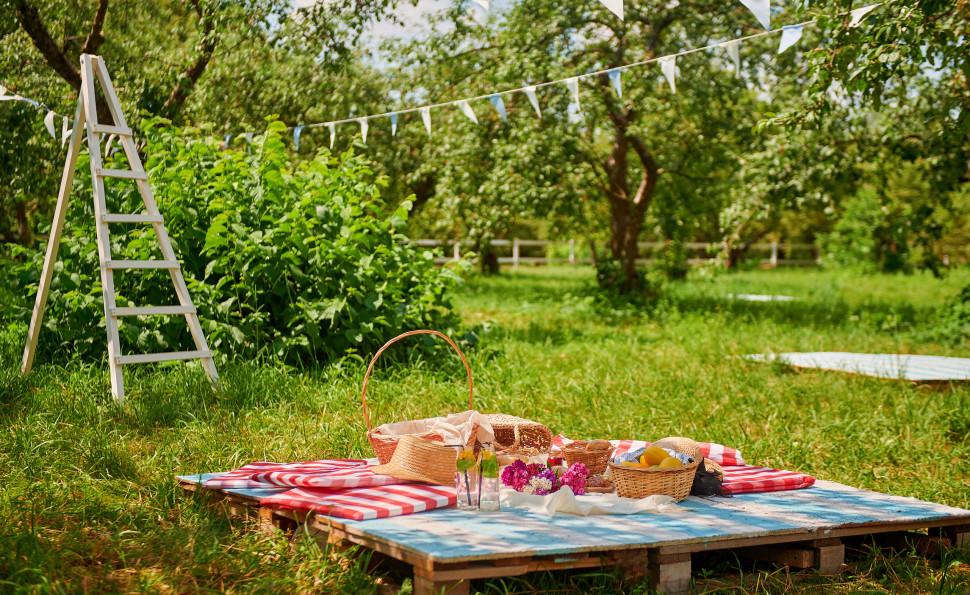 Пікник сад від ТМ Де Сад