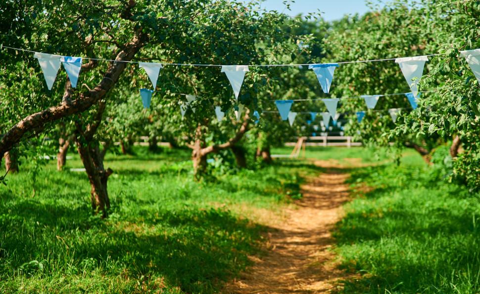 Пікник сад від ТМ ДеСад