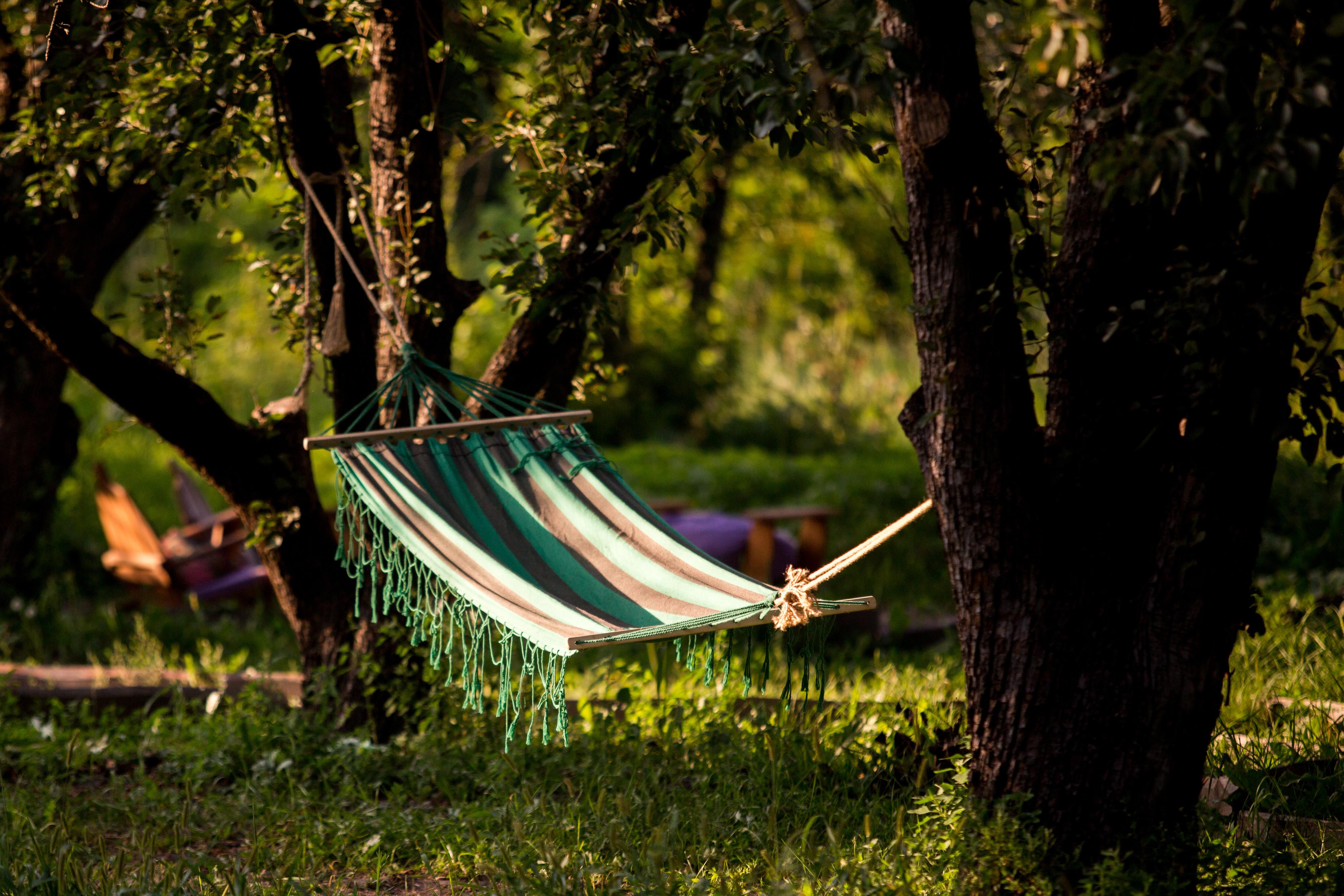 Сад гамаків